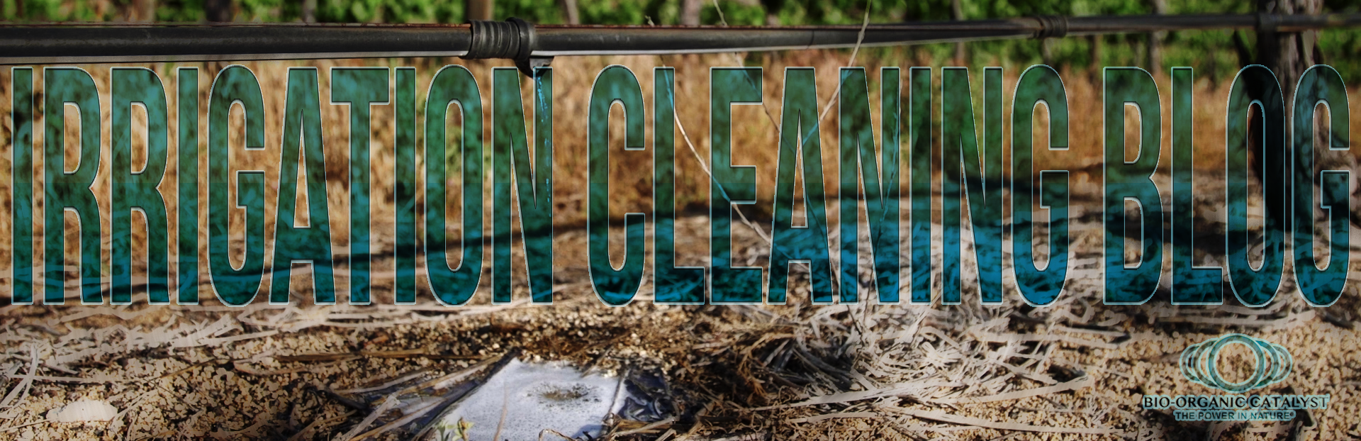 Irrigation Cleaning Blog